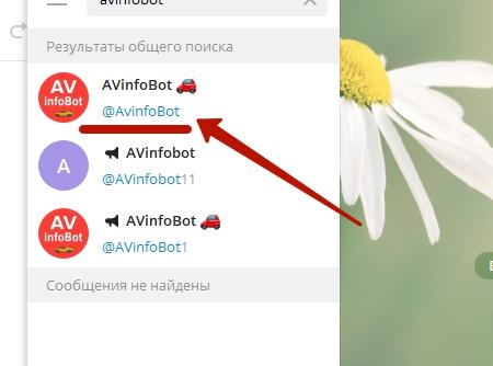 Avinfobot - как проверить авто? И можно ли пользоваться им бесплатно?