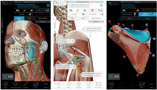 Human Anatomy Atlas скриншот